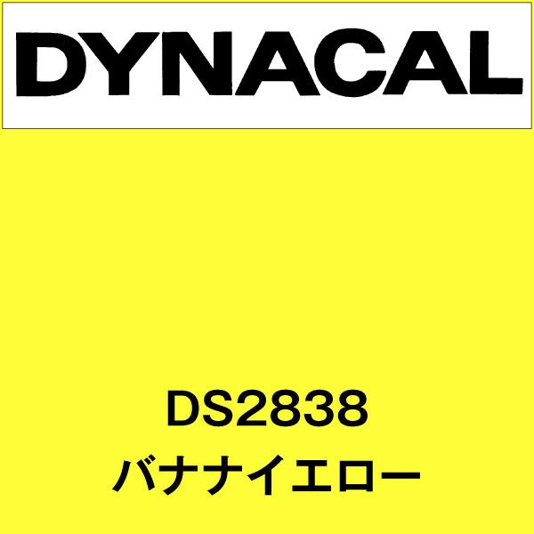 ダイナサイン DS2838 バナナイエロー(DS2838)