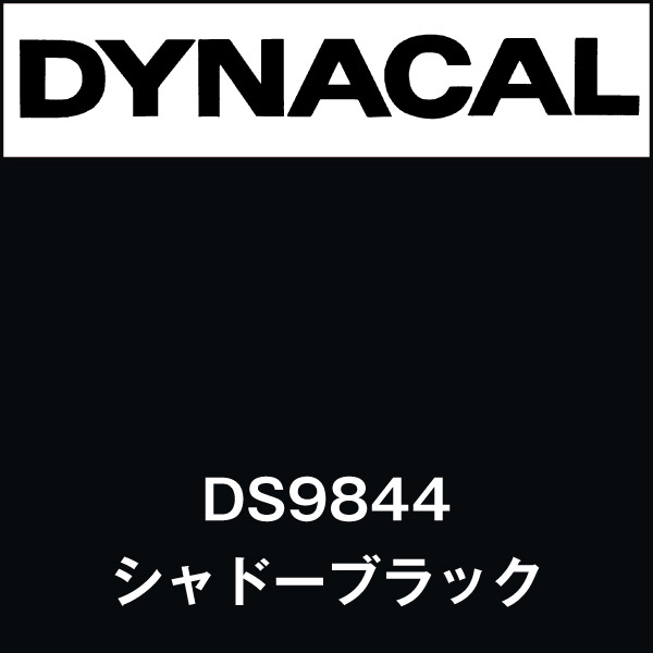 ダイナサイン DS9844 シャドーブラック(DS9844)
