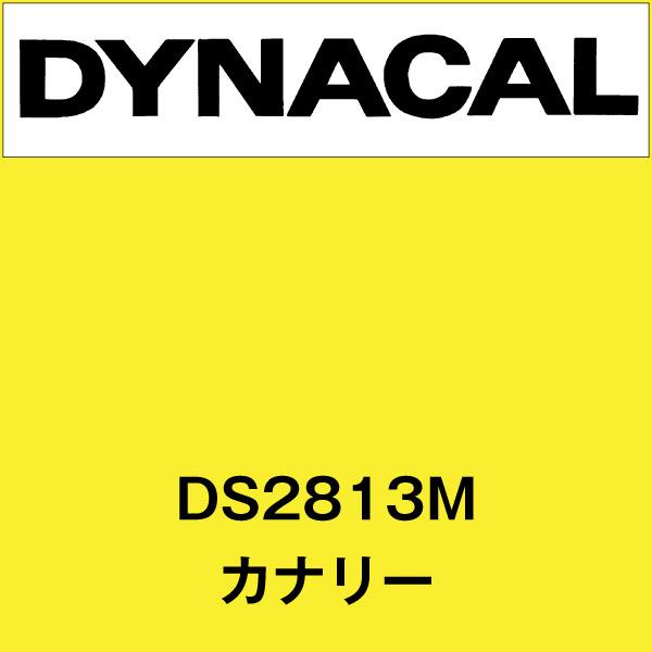 ダイナサイン DS2813M カナリー(DS2813M)