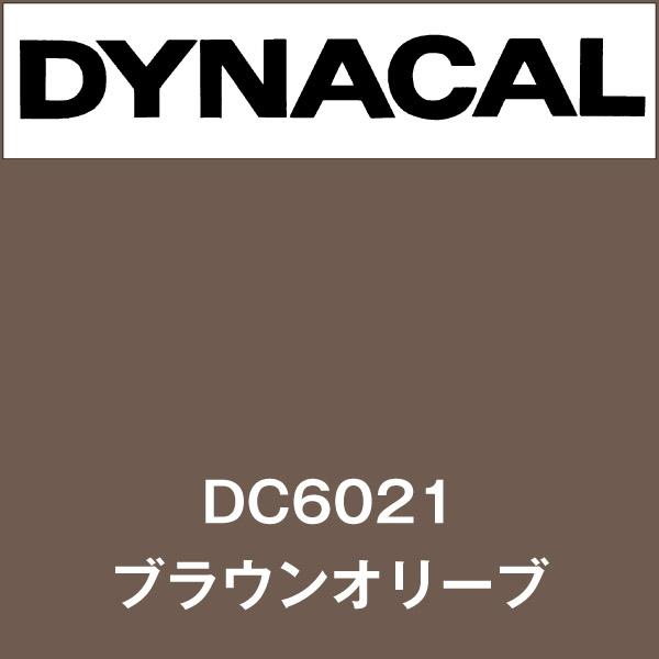 ダイナカル DC6021 ブラウンオリーブ(DC6021)