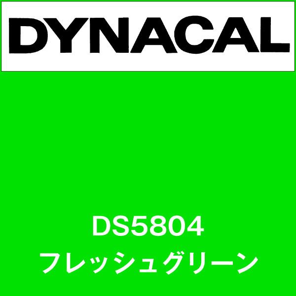 ダイナサイン DS5804 フレッシュグリーン(DS5804)