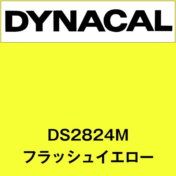 ダイナサイン DS2824M フラッシュイエロー(DS2824M)