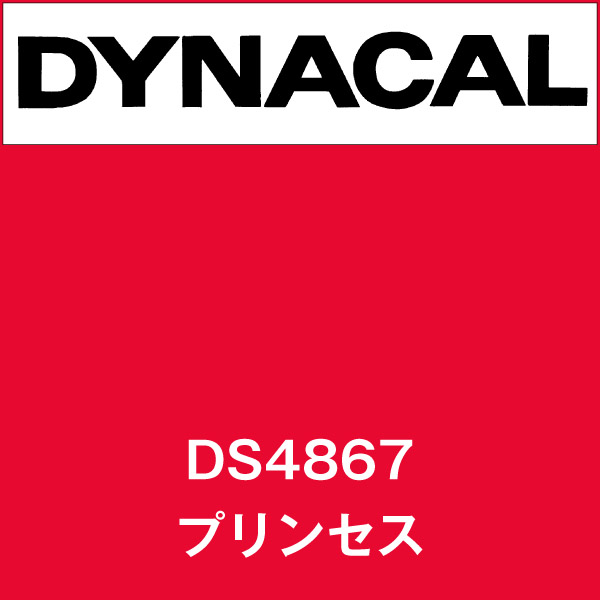 ダイナサイン DS4867 プリンセス(DS4867)