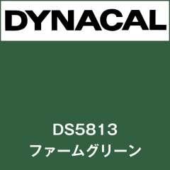 ダイナサイン DS5813 ファームグリーン