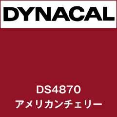 ダイナサイン DS4870 アメリカンチェリー