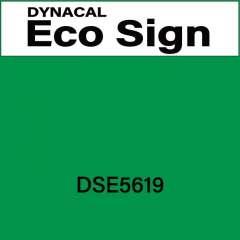 ダイナカルエコサイン DSE5619