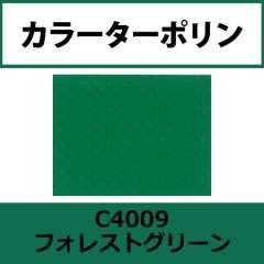 カラーターポリン APC400-F フォレストグリーン APC4009