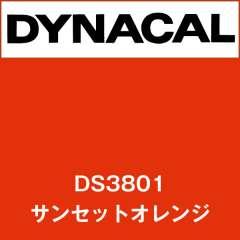 ダイナサイン DS3801 サンセットオレンジ