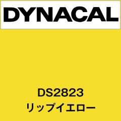 ダイナサイン DS2823 リップイエロー