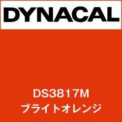 ダイナサイン DS3817M ブライトオレンジ
