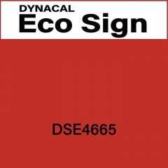 ダイナカルエコサイン DSE4665