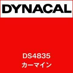 ダイナサイン DS4835 カーマイン