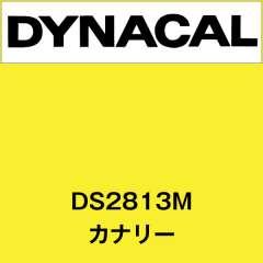ダイナサイン DS2813M カナリー