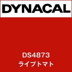 ダイナサイン DS4873 ライプトマト