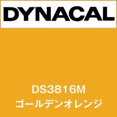 ダイナサイン DS3816M ゴールデンオレンジ