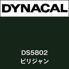 ダイナサイン DS5802 ビリジャン