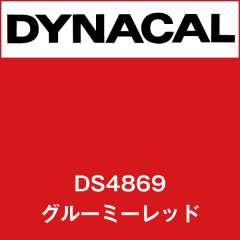 ダイナサイン DS4869 グルーミーレッド