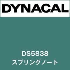 ダイナサイン DS5838 スプリングノート