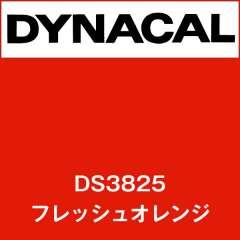 ダイナサイン DS3825 フレッシュオレンジ