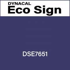 ダイナカルエコサイン DSE7651