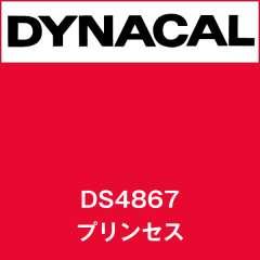 ダイナサイン DS4867 プリンセス