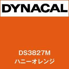 ダイナサイン DS3827M ハニーオレンジ