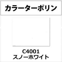 カラーターポリン APC400-F スノーホワイト APC4001