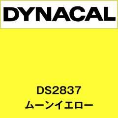 ダイナサイン DS2837 ムーンイエロー