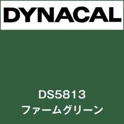 ダイナサイン DS5813 ファームグリーン(DS5813)