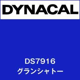 ダイナサイン DS7916 グランシャト-(DS7916)