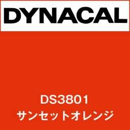 ダイナサイン DS3801 サンセットオレンジ(DS3801)