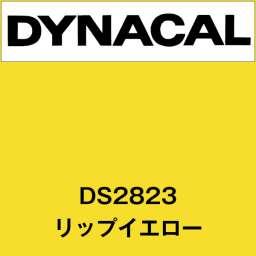 ダイナサイン DS2823 リップイエロー(DS2823)
