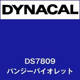 ダイナサイン DS7809 パンジーバイオレット(DS7809)