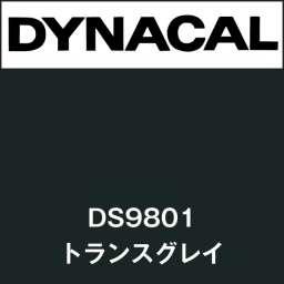 ダイナサイン DS9801 トランスグレイ(DS9801)