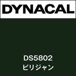 ダイナサイン DS5802 ビリジャン(DS5802)