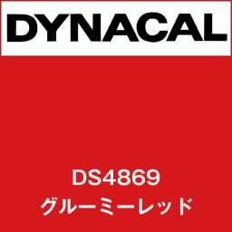 ダイナサイン DS4869 グルーミーレッド(DS4869)