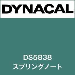 ダイナサイン DS5838 スプリングノート(DS5838)