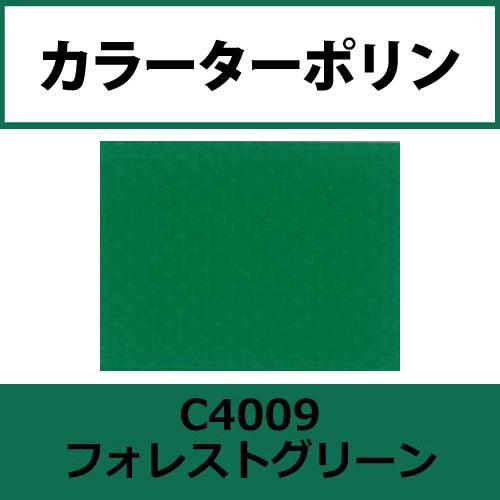 カラーターポリン APC400-F フォレストグリーン APC4009(APC4009)