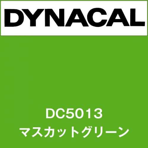 ダイナカル DC5013 マスカットグリーン(DC5013)