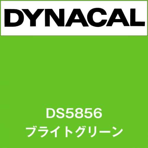 ダイナサイン DS5856 ブライトグリーン(DS5856)