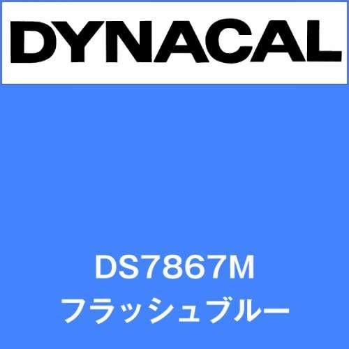 ダイナサイン DS7867M フラッシュブルー(DS7867M)