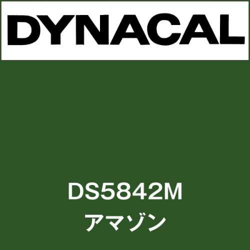 ダイナサイン DS5842M アマゾン(DS5842M)