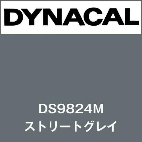 ダイナサイン DS9824M ストリートグレイ(DS9824M)