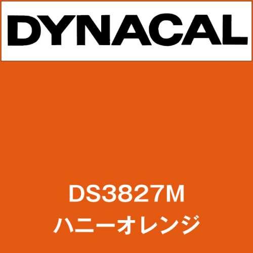 ダイナサイン DS3827M ハニーオレンジ(DS3827M)