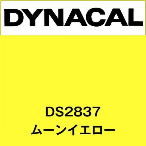 ダイナサイン DS2837 ムーンイエロー(DS2837)