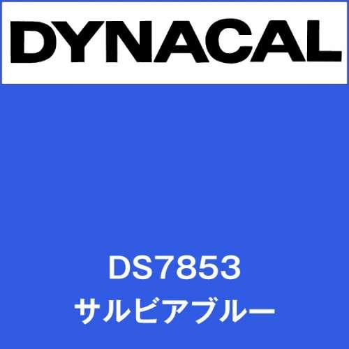 ダイナサイン DS7853 サルビアブルー(DS7853)